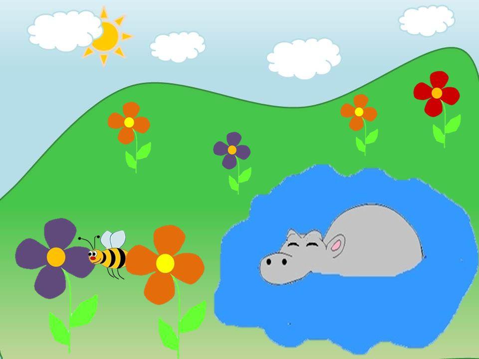 Mir ist total langweilig! Ich geh wieder schlafen … Wenigstens ist diese nervige Biene nicht da.