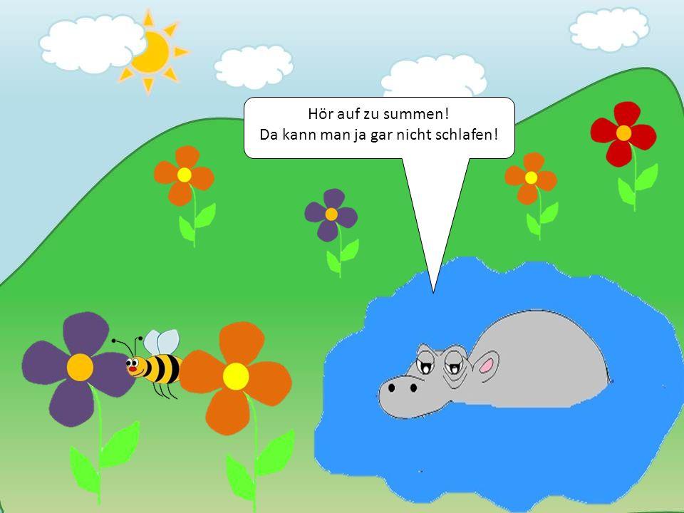 Was hab ich gerade gesagt? Hör auf! Nicht mal Flusspferde können hier schlafen.