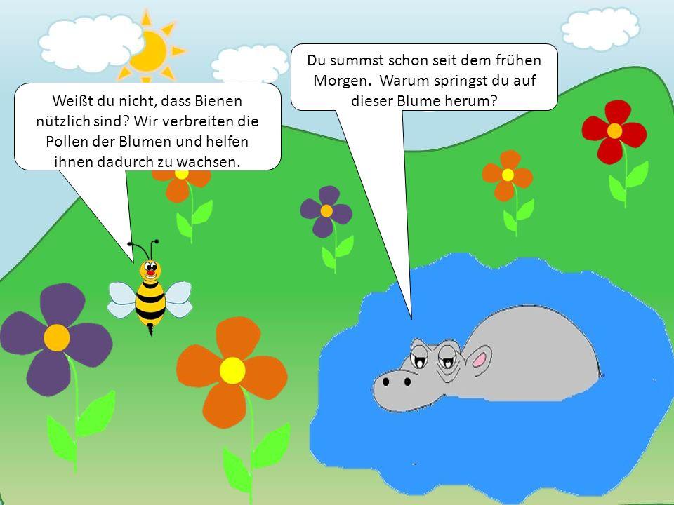 Weißt du nicht, dass Bienen nützlich sind? Wir verbreiten die Pollen der Blumen und helfen ihnen dadurch zu wachsen. Du summst schon seit dem frühen M
