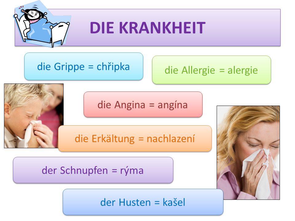 DIE KRANKHEIT die Grippe = chřipka die Angina = angína die Allergie = alergie der Schnupfen = rýma die Erkältung = nachlazení der Husten = kašel