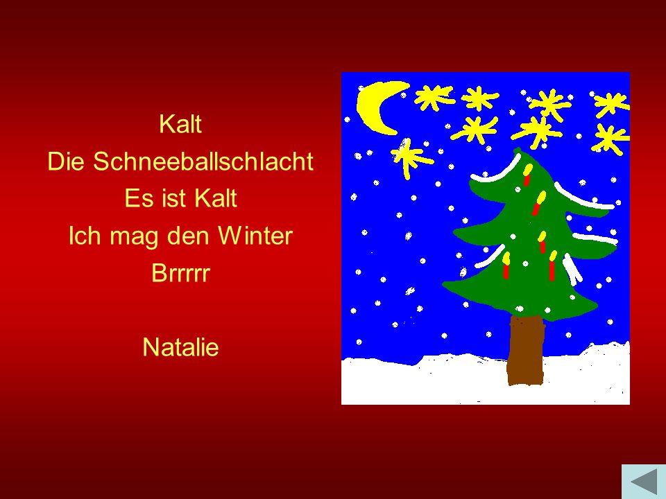 Kalt Die Schneeballschlacht Es ist Kalt Ich mag den Winter Brrrrr Natalie