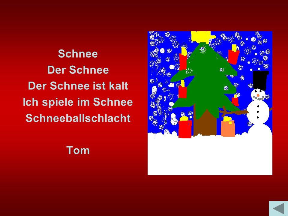 Schnee Der Schnee Der Schnee ist kalt Ich spiele im Schnee Schneeballschlacht Tom