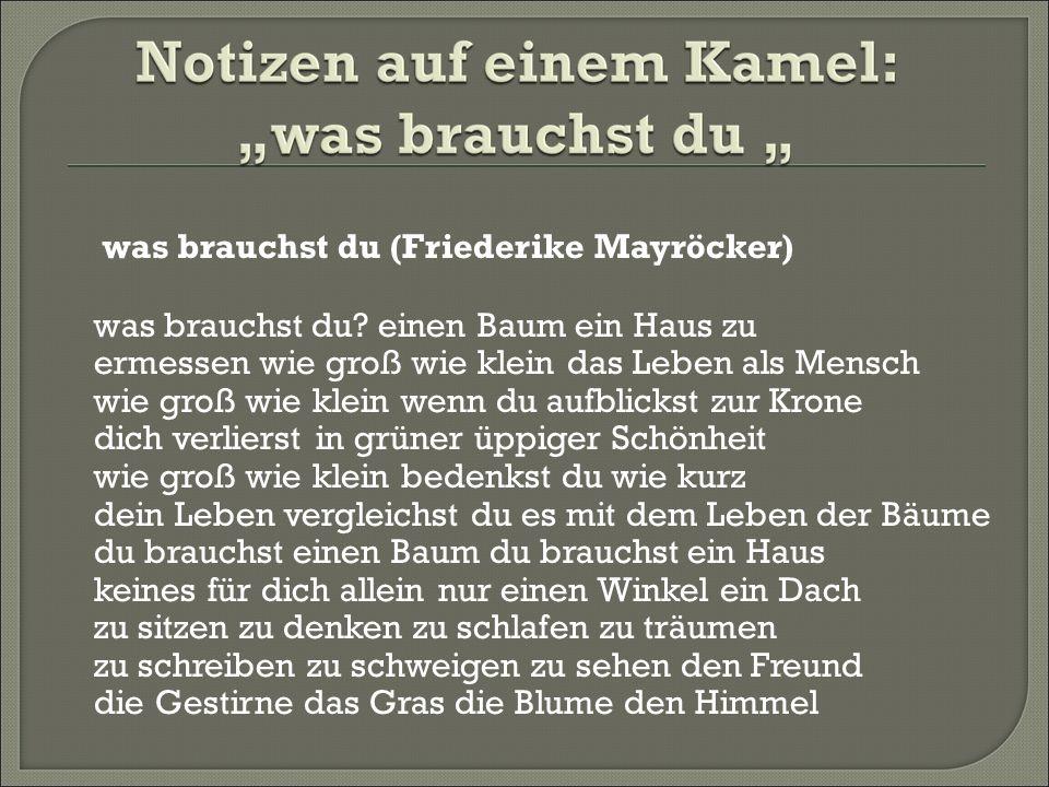 was brauchst du (Friederike Mayröcker) was brauchst du.