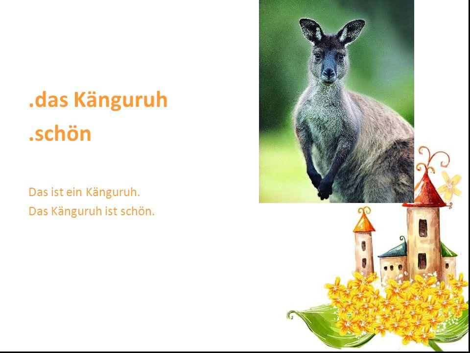 .das Känguruh.schön Das ist ein Känguruh. Das Känguruh ist schön.