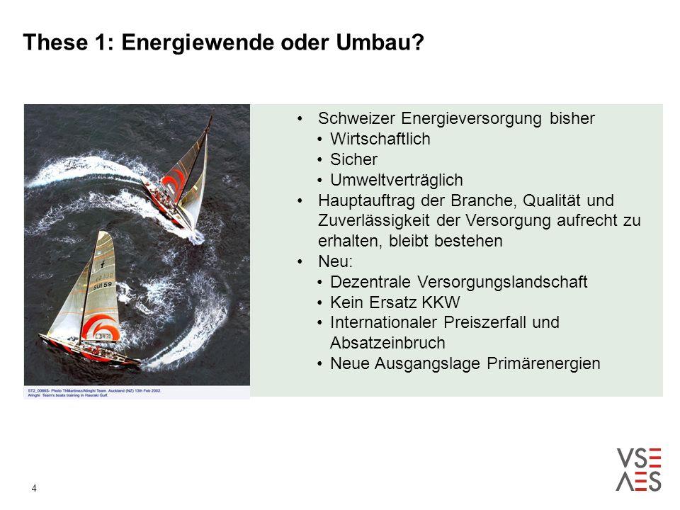 4 These 1: Energiewende oder Umbau.