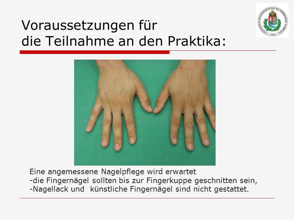 Voraussetzungen für die Teilnahme an den Praktika: Eine angemessene Nagelpflege wird erwartet -die Fingernägel sollten bis zur Fingerkuppe geschnitten