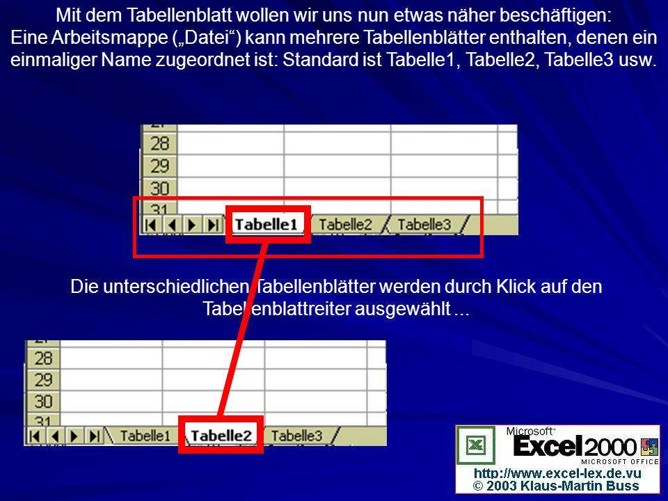 Mit dem Tabellenblatt wollen wir uns nun etwas näher beschäftigen: Eine Arbeitsmappe (Datei) kann mehrere Tabellenblätter enthalten, denen ein einmali
