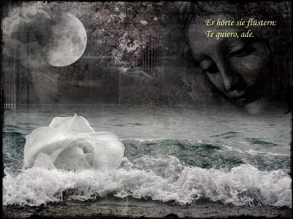 Er sah ihre Tränen, sein Herz tat ihm weh.
