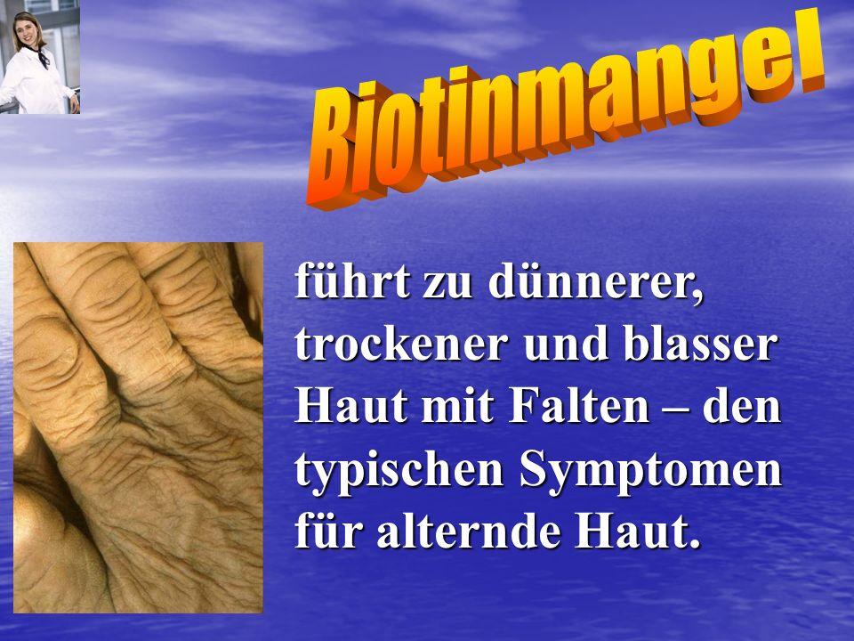 führt zu dünnerer, trockener und blasser Haut mit Falten – den typischen Symptomen für alternde Haut.
