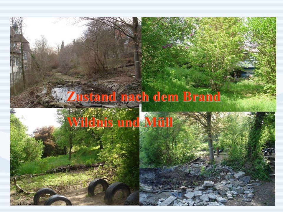 FSR Grundschule Planung und Vorarbeiten 11.03.20125FSR Grünbereich