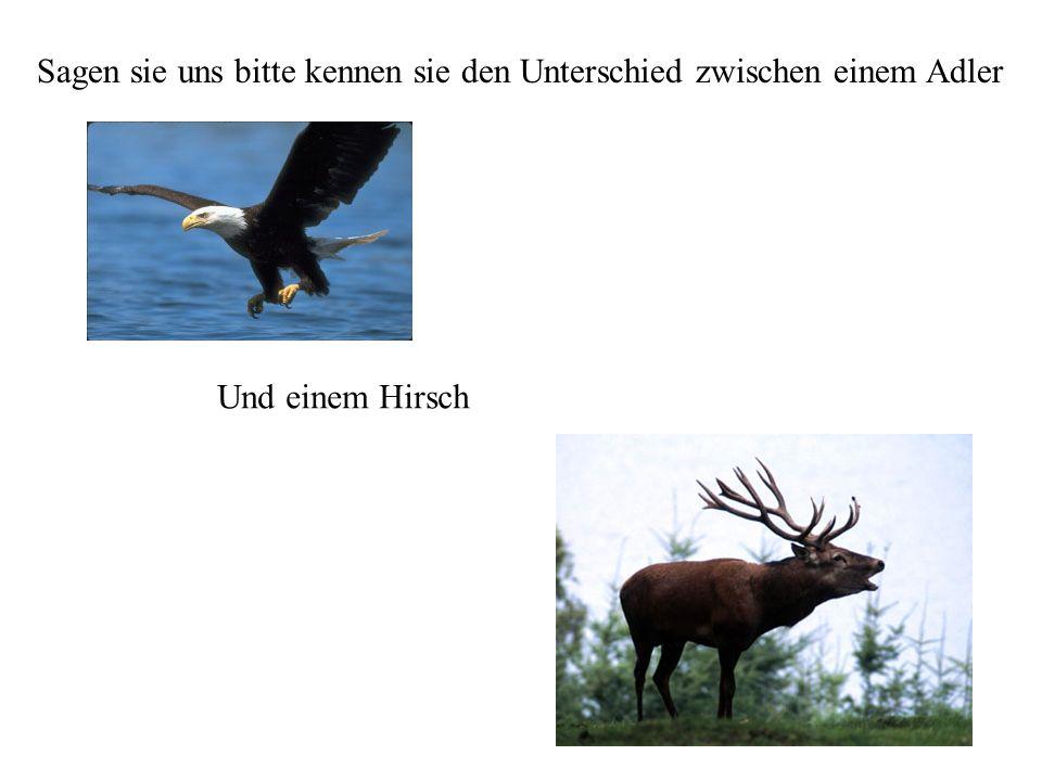 Sagen sie uns bitte kennen sie den Unterschied zwischen einem Adler Und einem Hirsch