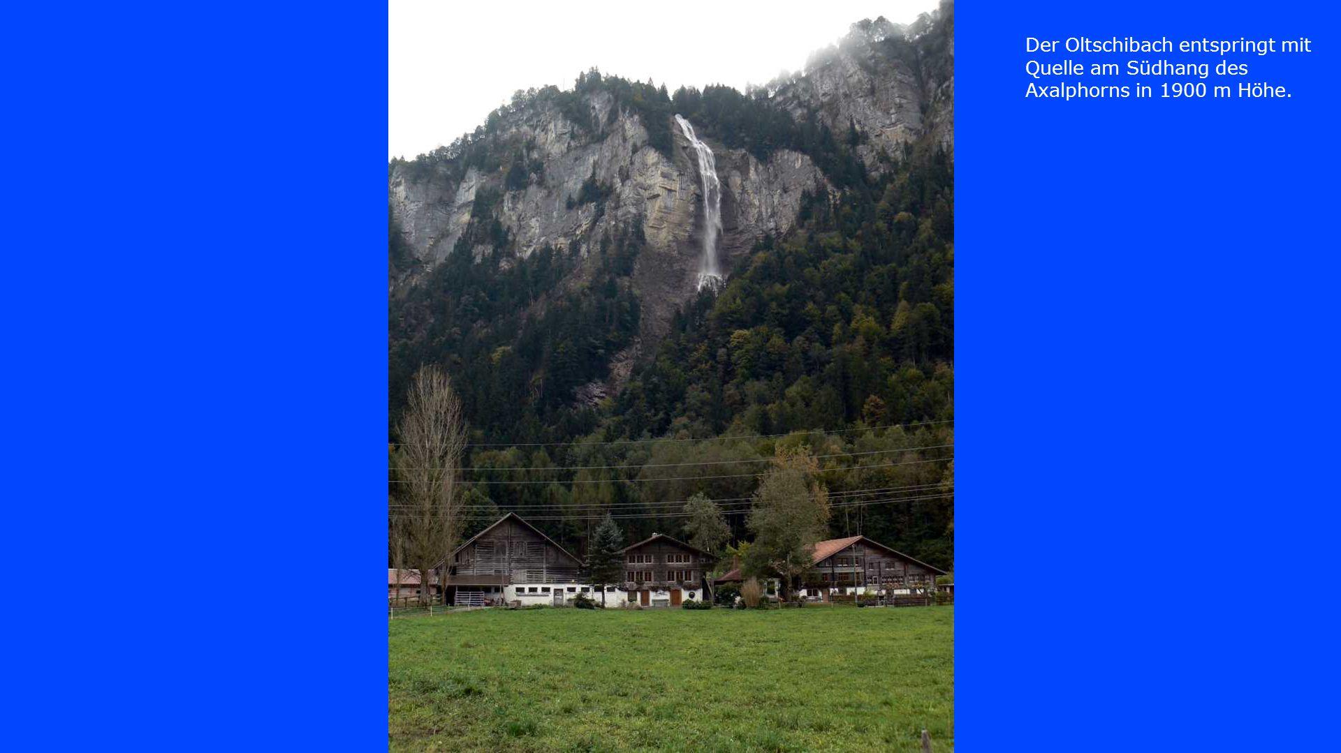 Der Oltschibach entspringt mit Quelle am Südhang des Axalphorns in 1900 m Höhe.