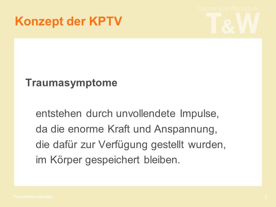 Psychotraumatologie3 Konzept der KPTV Traumasymptome entstehen durch unvollendete Impulse, da die enorme Kraft und Anspannung, die dafür zur Verfügung gestellt wurden, im Körper gespeichert bleiben.