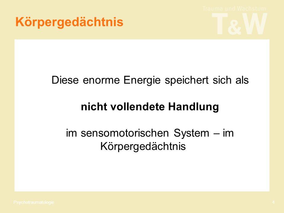 Psychotraumatologie4 Diese enorme Energie speichert sich als nicht vollendete Handlung im sensomotorischen System – im Körpergedächtnis Körpergedächtnis