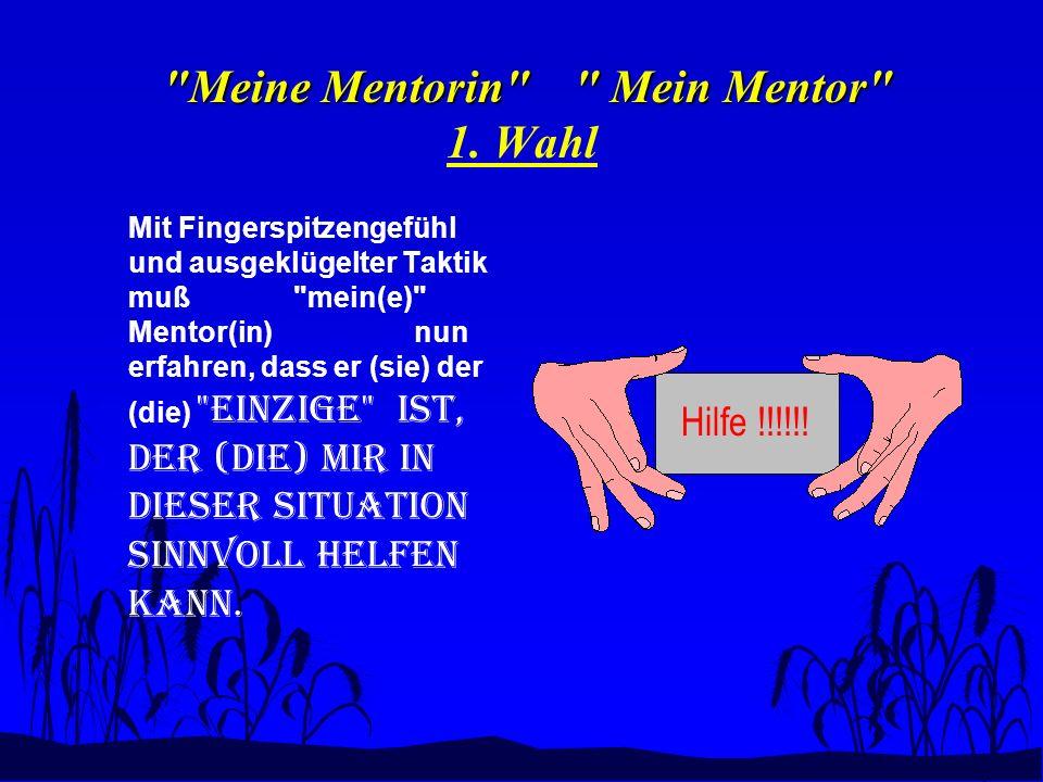 Meine Mentorin Mein Mentor Meine Mentorin Mein Mentor 1.