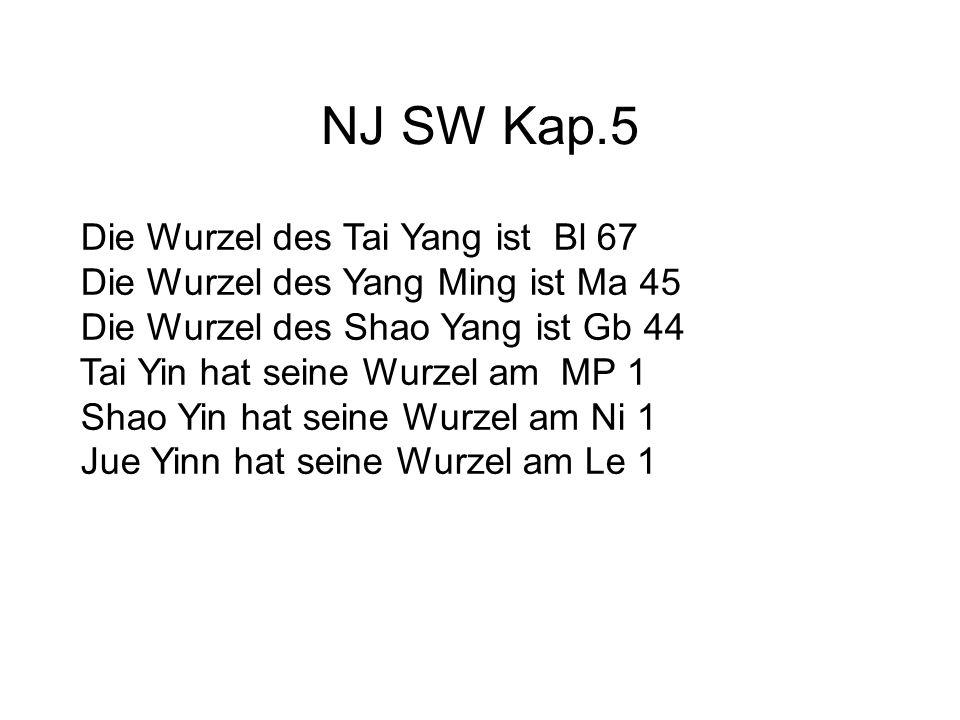 NJ SW Kap.5 Die Wurzel des Tai Yang ist Bl 67 Die Wurzel des Yang Ming ist Ma 45 Die Wurzel des Shao Yang ist Gb 44 Tai Yin hat seine Wurzel am MP 1 Shao Yin hat seine Wurzel am Ni 1 Jue Yinn hat seine Wurzel am Le 1