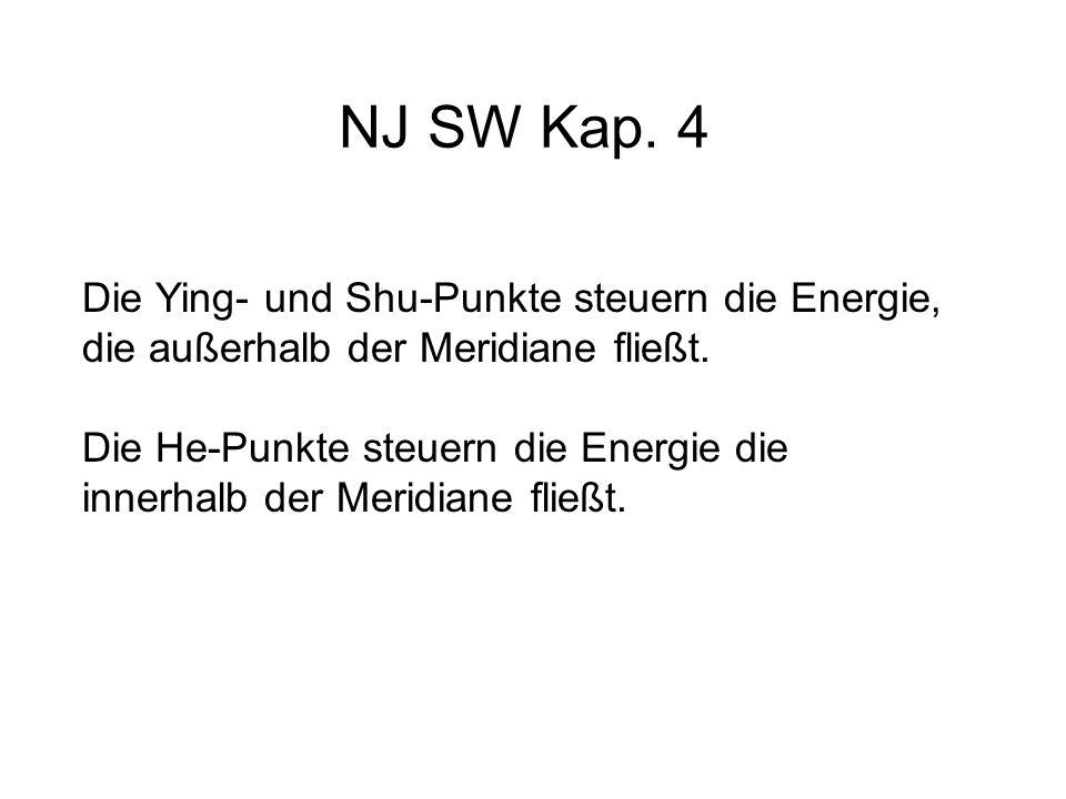 NJ SW Kap. 4 Die Ying- und Shu-Punkte steuern die Energie, die außerhalb der Meridiane fließt.