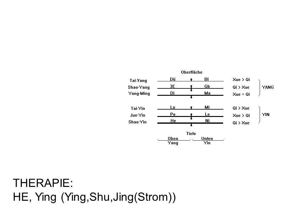 THERAPIE: HE, Ying (Ying,Shu,Jing(Strom))