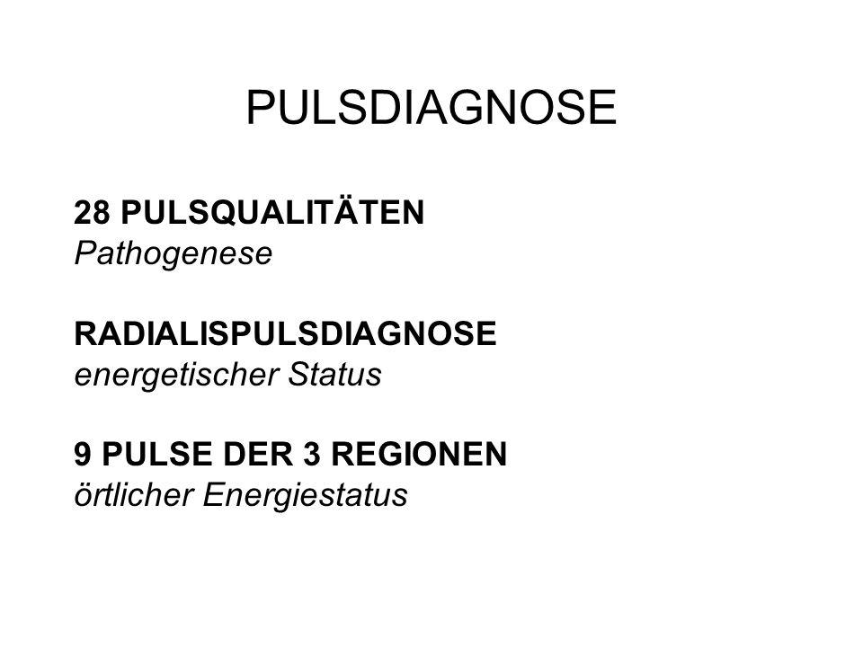 PULSDIAGNOSE 28 PULSQUALITÄTEN Pathogenese RADIALISPULSDIAGNOSE energetischer Status 9 PULSE DER 3 REGIONEN örtlicher Energiestatus