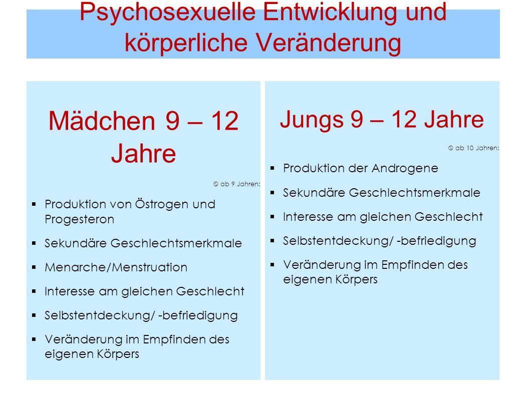 Psychosexuelle Entwicklung und körperliche Veränderung Mädchen 9 – 12 Jahre ab 9 Jahren: Produktion von Östrogen und Progesteron Sekundäre Geschlechts