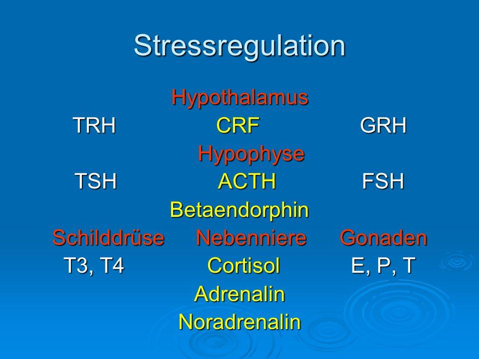 Stress und Hyperprolaktinämie Fallbeispiel Hypothyreose w, 38a, berufliche und familiäre Stresssituation Part.
