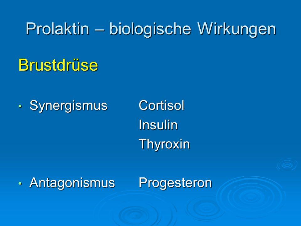Prolaktin – biologische Wirkungen Brustdrüse SynergismusCortisol SynergismusCortisolInsulinThyroxin Antagonismus Progesteron Antagonismus Progesteron