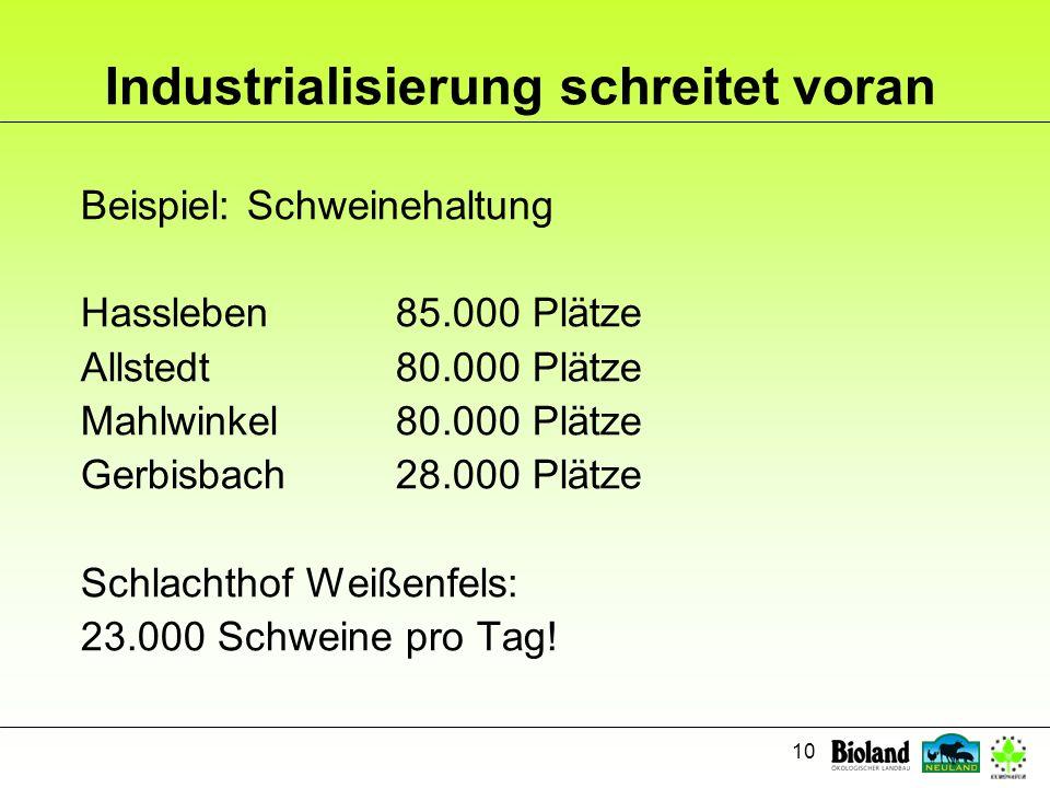 10 Industrialisierung schreitet voran Beispiel: Schweinehaltung Hassleben85.000 Plätze Allstedt80.000 Plätze Mahlwinkel80.000 Plätze Gerbisbach28.000