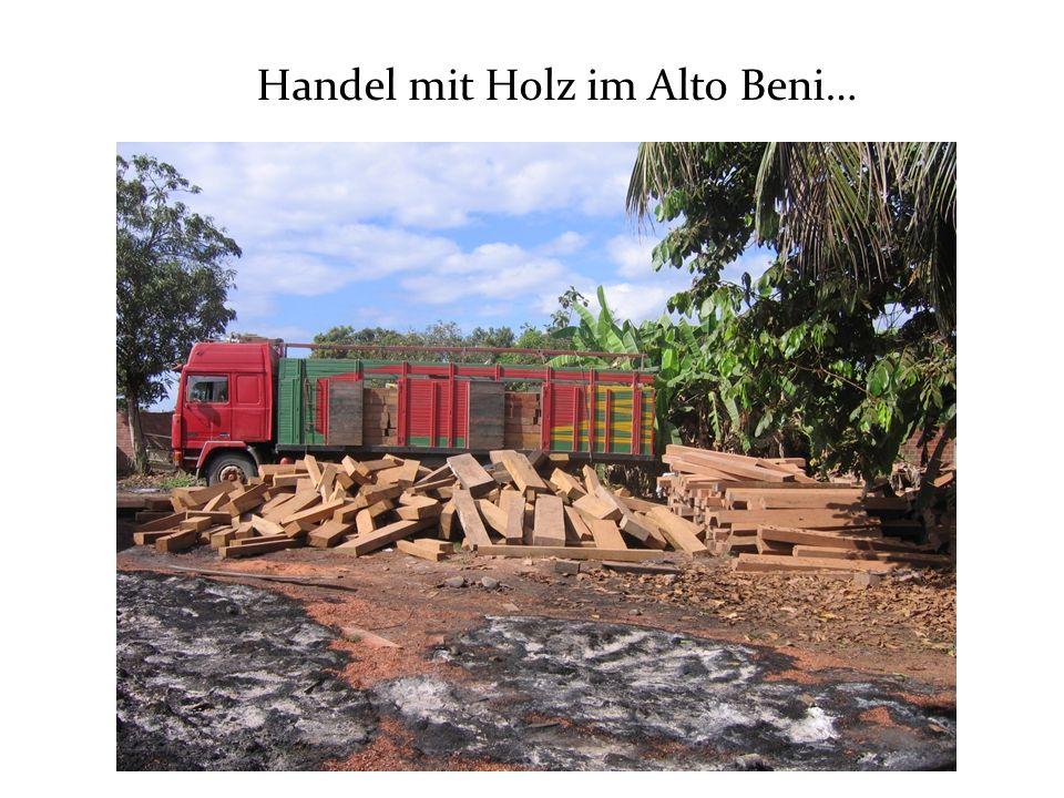 Handel mit Holz im Alto Beni…