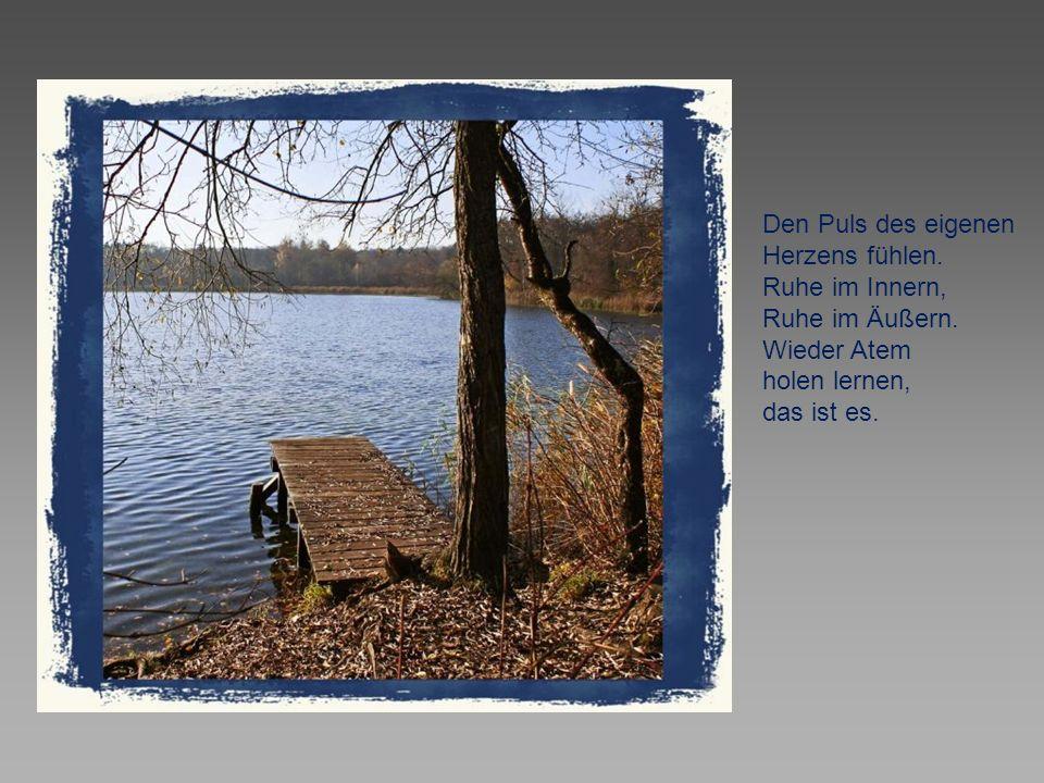 Nur ein ruhendes Gewässer wird wieder klar.