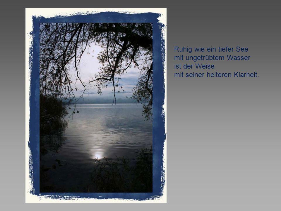 Ruhig wie ein tiefer See mit ungetrübtem Wasser ist der Weise mit seiner heiteren Klarheit.