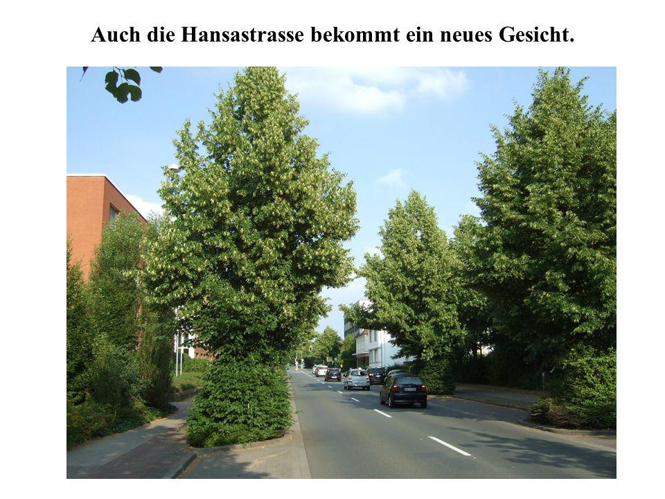 Auch die Hansastrasse bekommt ein neues Gesicht.