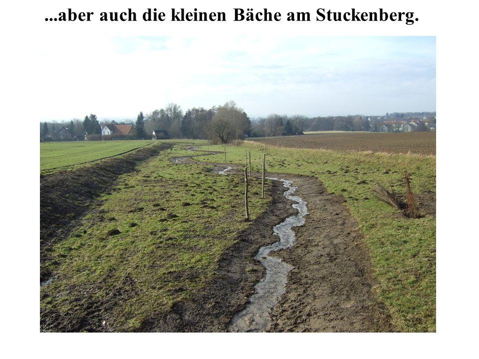 ...aber auch die kleinen Bäche am Stuckenberg.