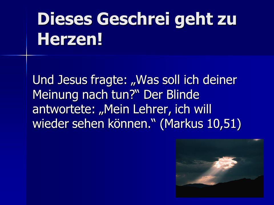 Dieses Geschrei geht zu Herzen.Und Jesus fragte: Was soll ich deiner Meinung nach tun.
