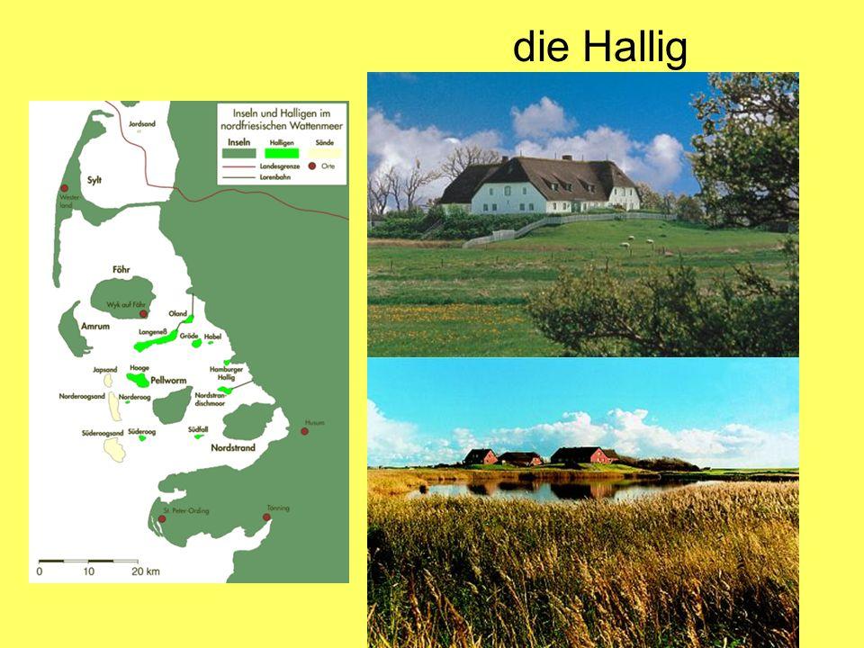 Heilwig Niehoff (Hallig Hooge) Mein Mann und ich, wir haben unseren Bauernhof noch und wir machen auch noch ein bisschen Landwirtschaft.