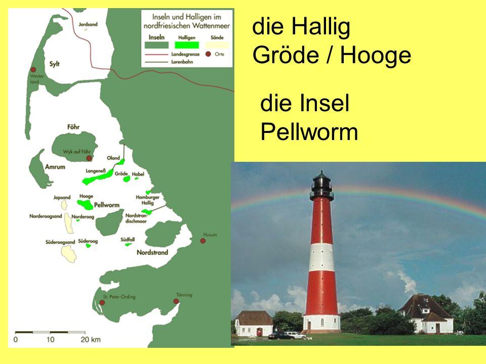 die Hallig Gröde / Hooge die Insel Pellworm