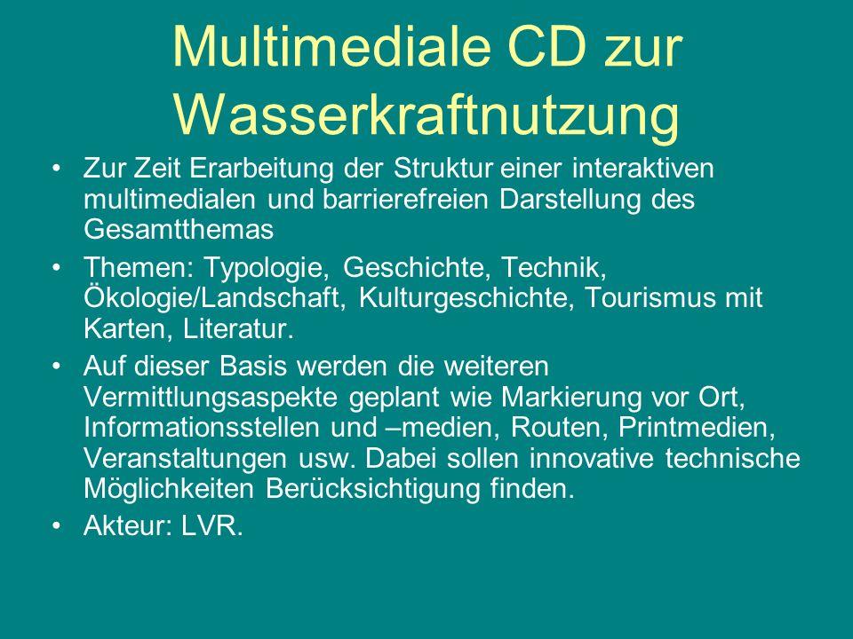 Multimediale CD zur Wasserkraftnutzung Zur Zeit Erarbeitung der Struktur einer interaktiven multimedialen und barrierefreien Darstellung des Gesamtthe