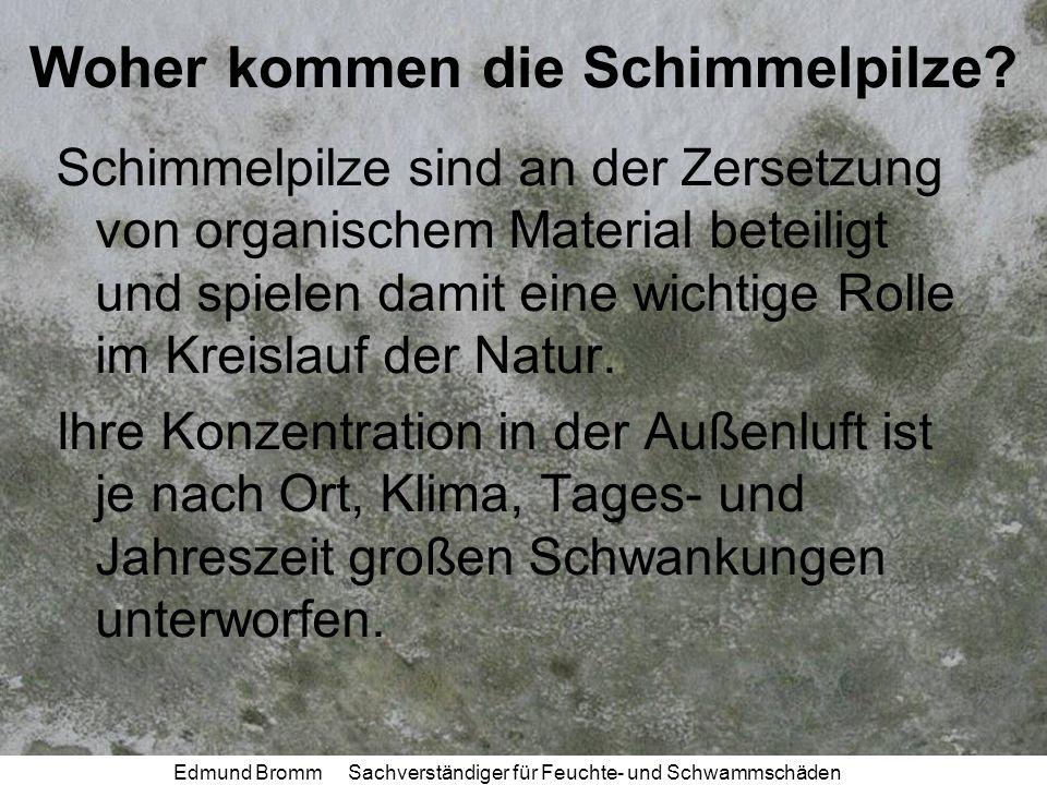 Edmund Bromm Sachverständiger für Feuchte- und Schwammschäden Woher kommen die Schimmelpilze.