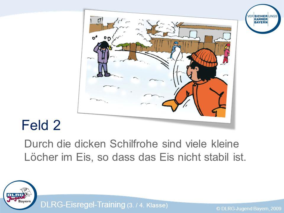 DLRG-Eisregel-Training (3. / 4. Klasse) © DLRG-Jugend Bayern, 2009 Feld 2 Durch die dicken Schilfrohe sind viele kleine Löcher im Eis, so dass das Eis