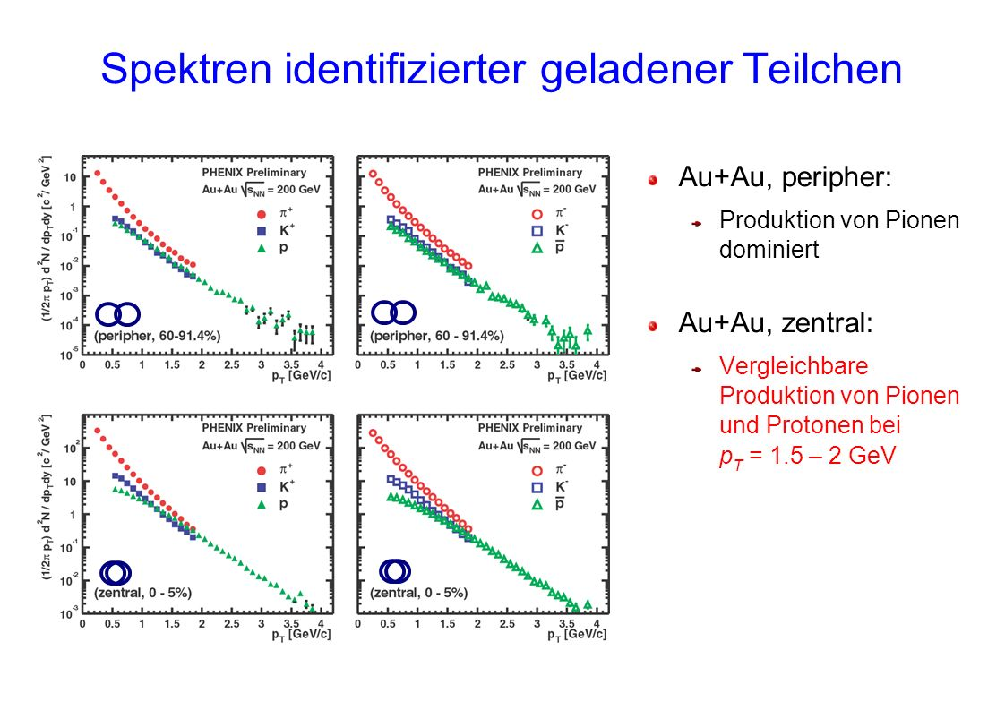 Spektren identifizierter geladener Teilchen Au+Au, peripher: Produktion von Pionen dominiert Au+Au, zentral: Vergleichbare Produktion von Pionen und Protonen bei p T = 1.5 – 2 GeV