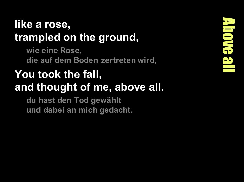 Above all like a rose, trampled on the ground, wie eine Rose, die auf dem Boden zertreten wird, You took the fall, and thought of me, above all. du ha