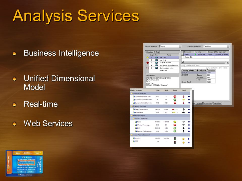 Analysis Services Business Intelligence Unified Dimensional Model Real-time Web Services