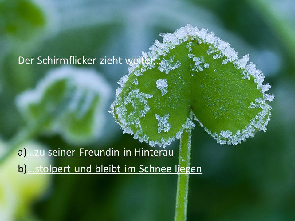 Der Schirmflicker zieht weiter,… a)…zu seiner Freundin in Hinterau…zu seiner Freundin in Hinterau b)…stolpert und bleibt im Schnee liegen…stolpert und