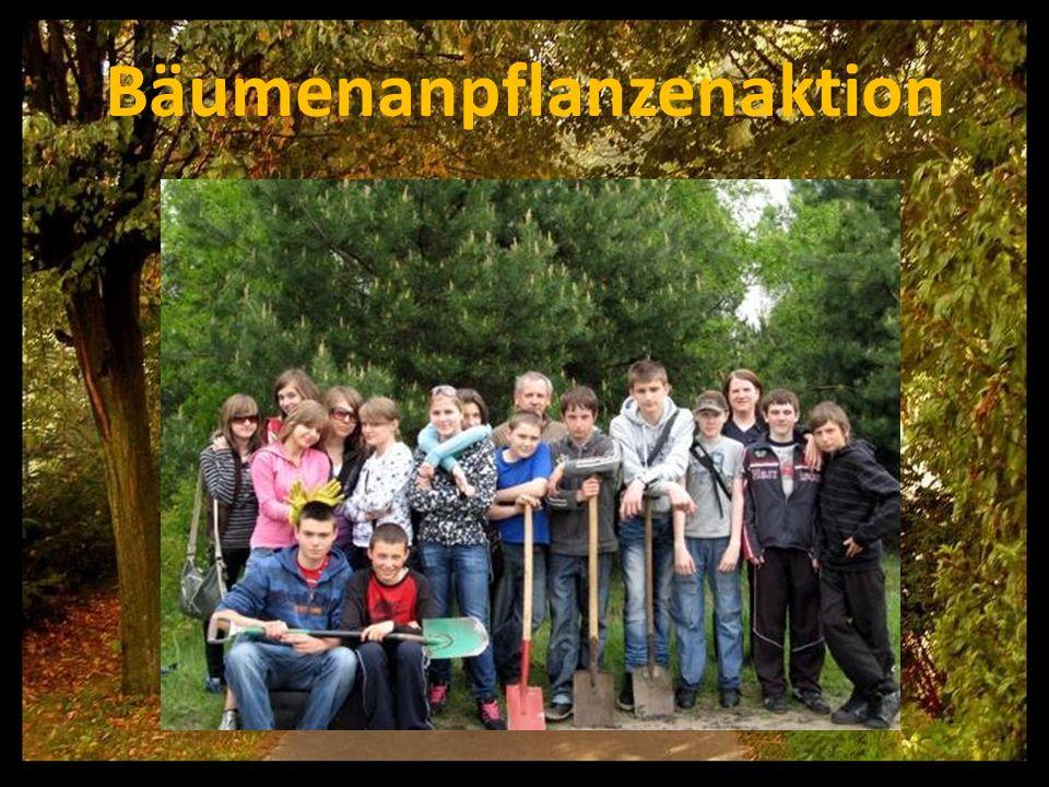 Bäumenanpflanzenaktion