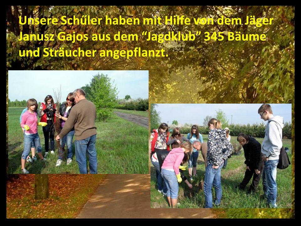 Unsere Schűler haben mit Hilfe von dem Jäger Janusz Gajos aus dem Jagdklub 345 Bäume und Sträucher angepflanzt.