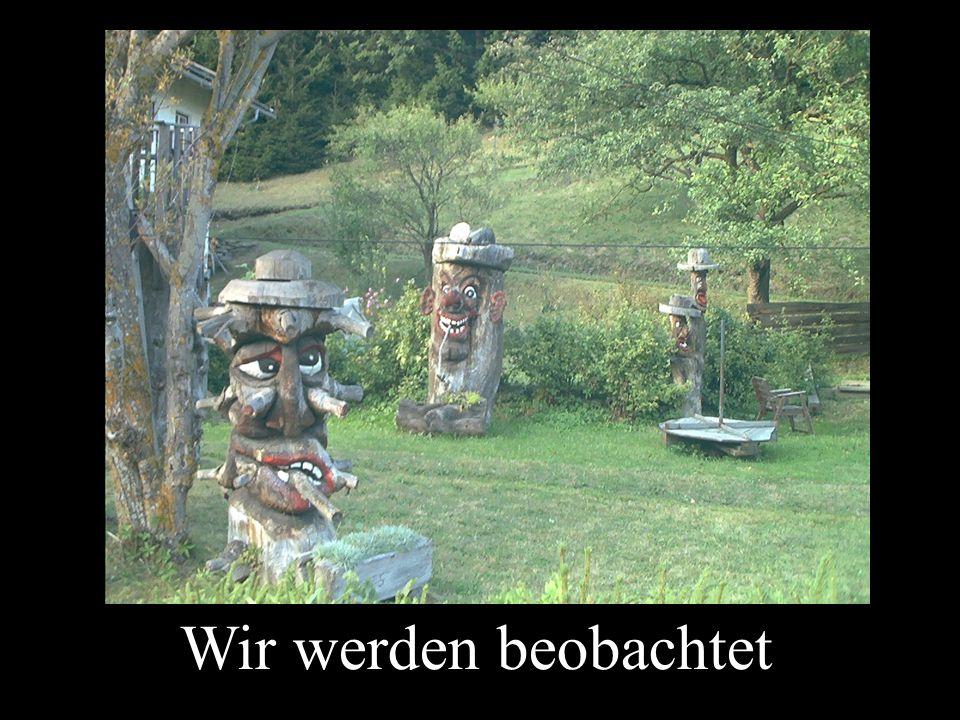 Und es war schön in Osttirol gggggg Ende…….