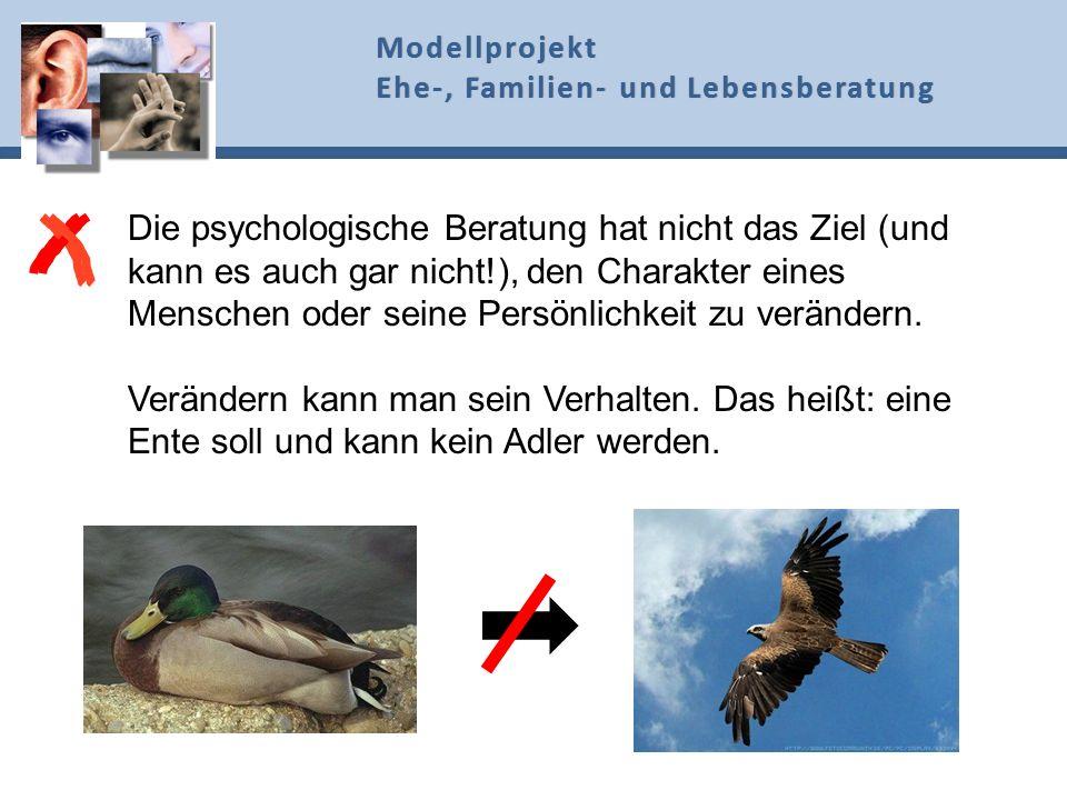 Die psychologische Beratung hat nicht das Ziel (und kann es auch gar nicht!), den Charakter eines Menschen oder seine Persönlichkeit zu verändern. Ver