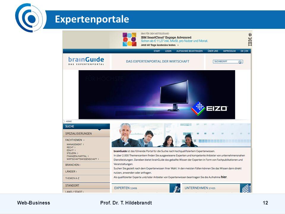 Expertenportale Web-BusinessProf. Dr. T. Hildebrandt12