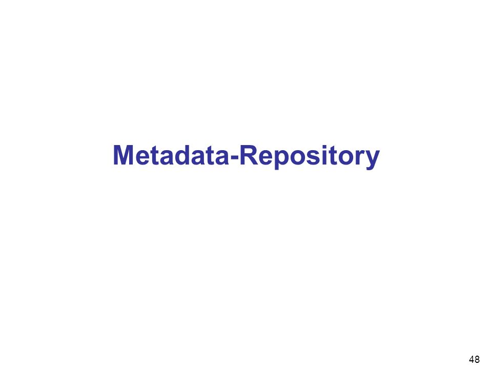 48 Metadata-Repository