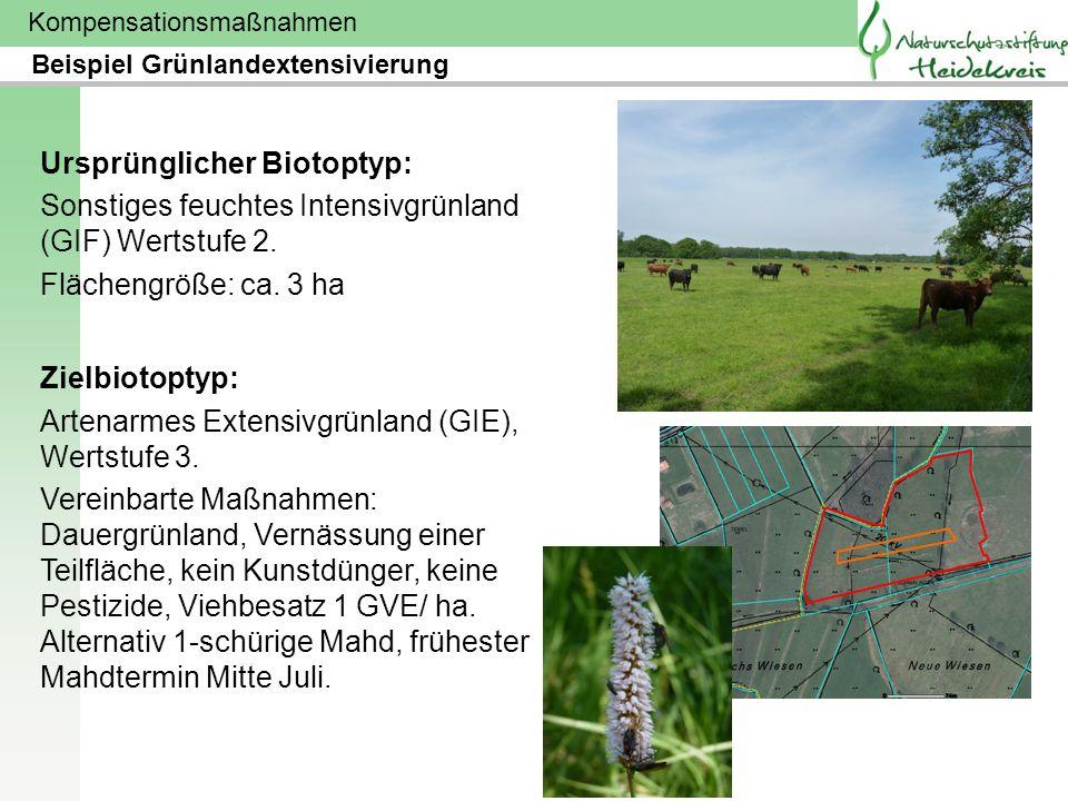 Kompensationsmaßnahmen Ursprünglicher Biotoptyp: Sonstiges feuchtes Intensivgrünland (GIF) Wertstufe 2. Flächengröße: ca. 3 ha Zielbiotoptyp: Artenarm