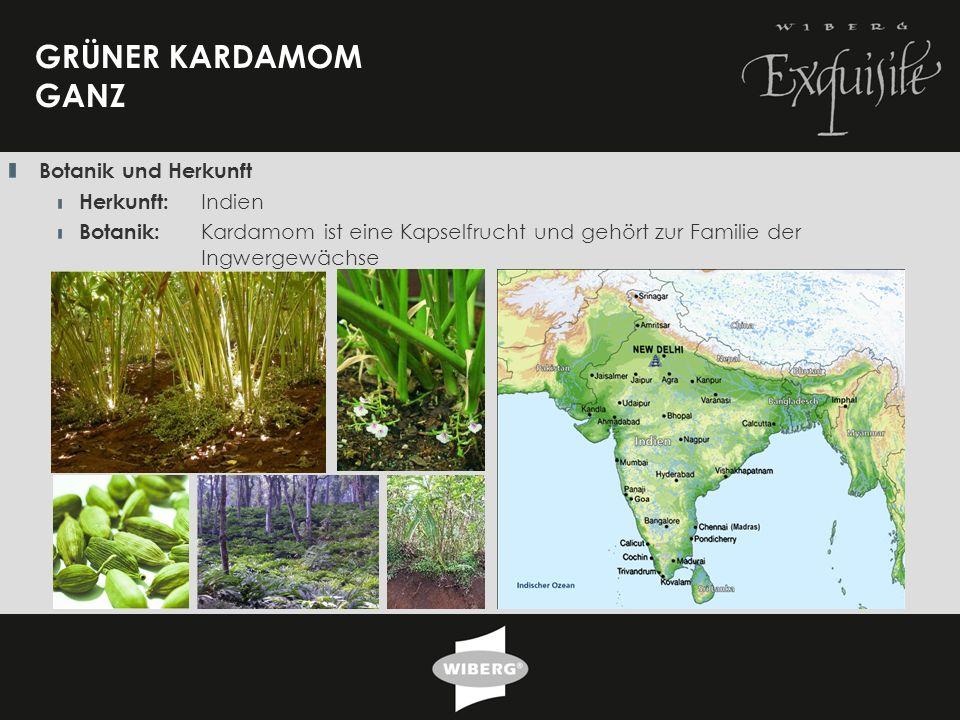 18 GRÜNER KARDAMOM GANZ Botanik und Herkunft Herkunft: Indien Botanik: Kardamom ist eine Kapselfrucht und gehört zur Familie der Ingwergewächse